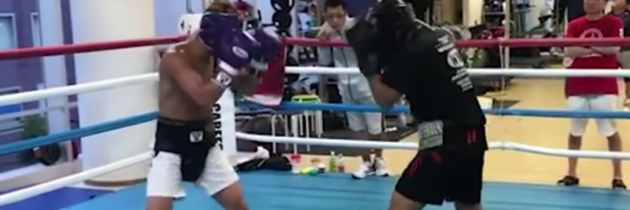 WATCH: Noaya Inoue drops sparring partner