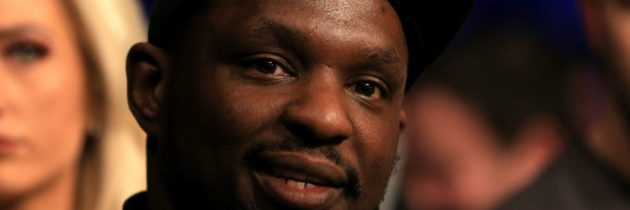 Whyte: Okolie is a joke, I'd end his career if he moves up
