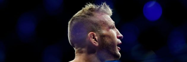 Midnight Mania! Dillashaw Using Suspension For Long-Needed Surgeries