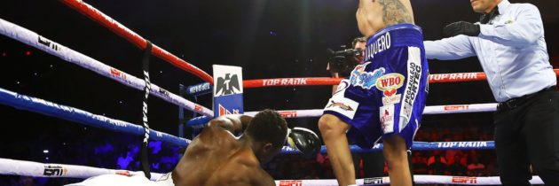 Navarrete stops Dogboe in 12-round beating