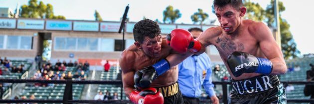Damien Vazquez returns Aug. 24 with new trainer