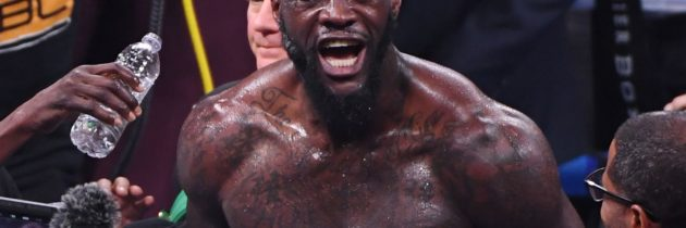 Highlights: Watch Wilder knock out Ortiz with one punch