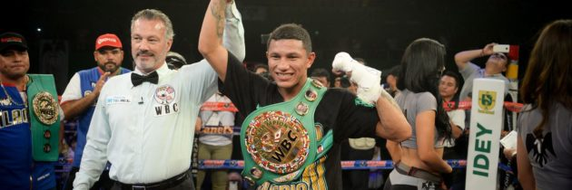 Berchelt destroys Sosa to retain WBC title