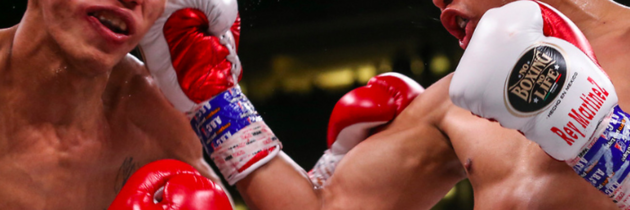 Martinez stops Rosales in nine to win WBC flyweight title