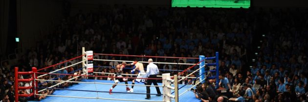 Japan looking to resume boxing on May 2
