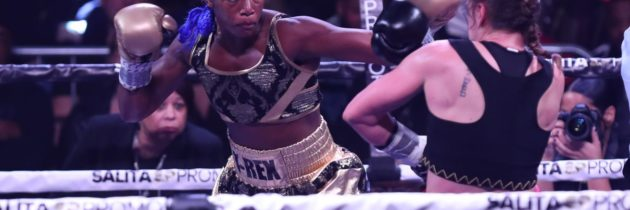 Shields vs. Dicaire unification in the works for May 9th