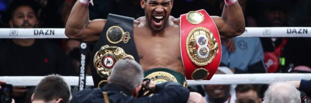 Joshua: Fury is just another opponent