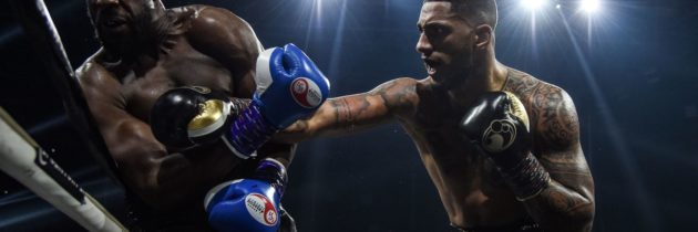 Results and highlights: Yoka stops Djeko in 12th round